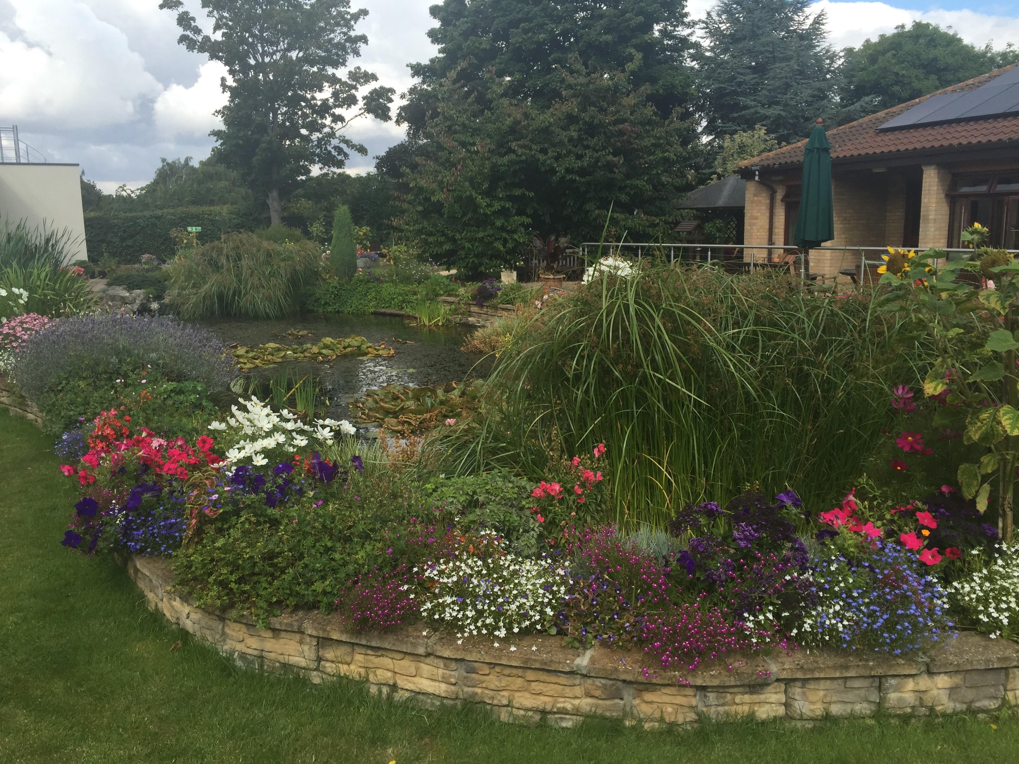 SEH garden